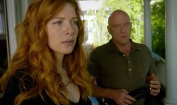 Under the Dome - Staffel 2